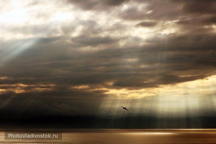 Амурский залив. Закаты и рассветы. Фотографии Владивостока