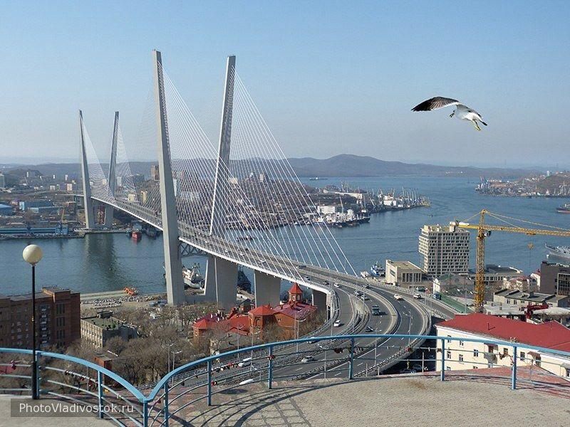 Полет. Мосты. Фотографии Владивостока