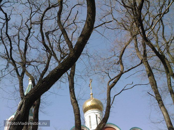 . Церкви и храмы. Фотографии Владивостока