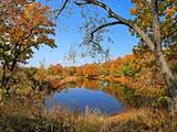 Ильинские озёра.. Осень. Фотографии Владивостока